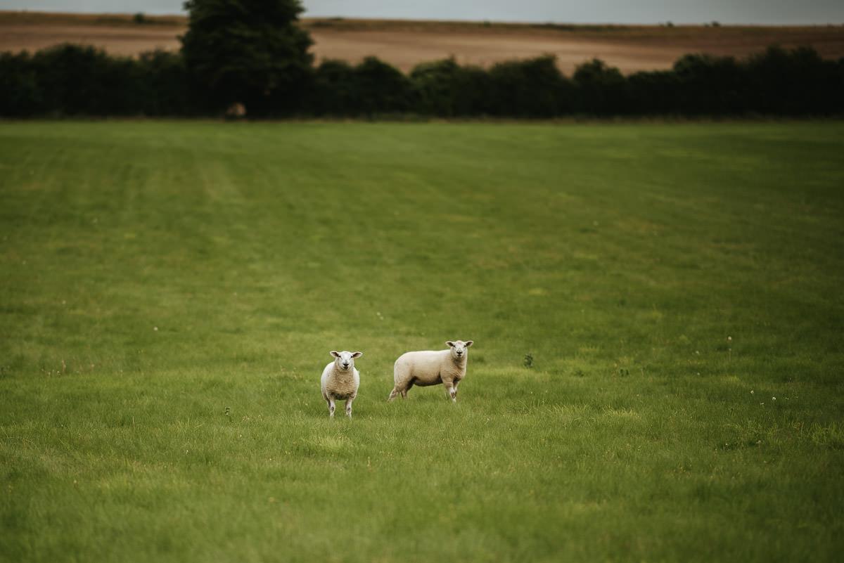 Wedding Photographer Hampshire-Clock Barn 85