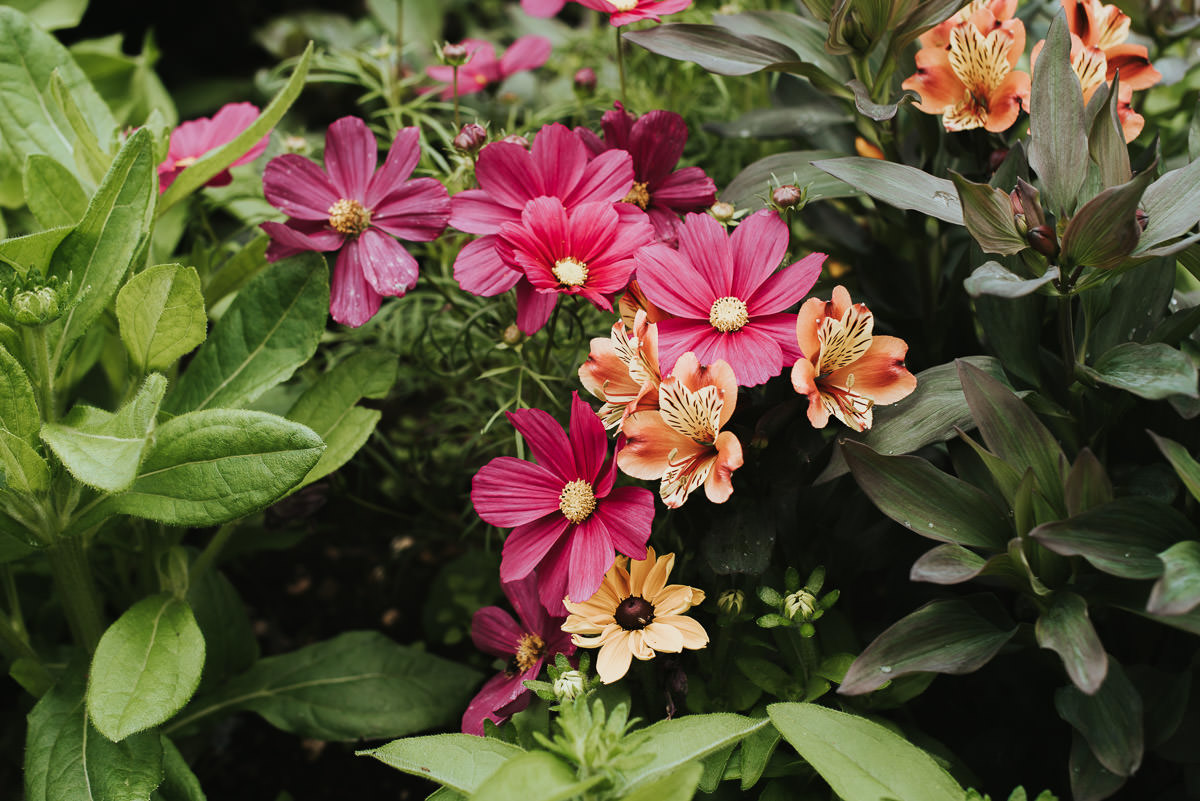 missenden abbey flowers