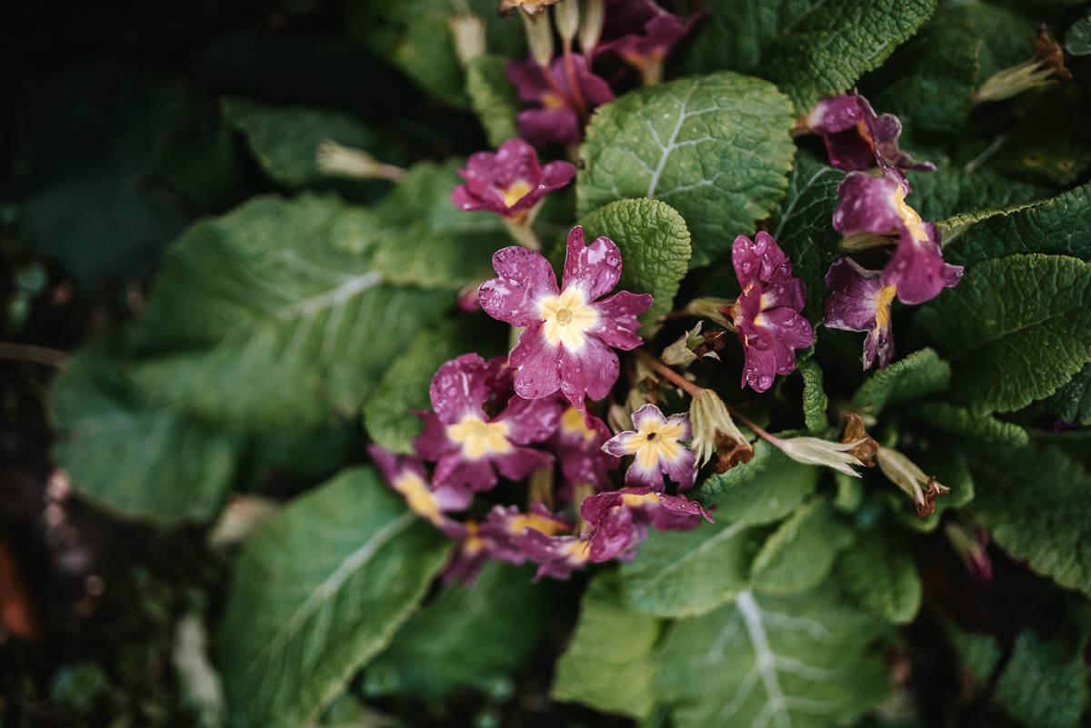 norton park wedding flowers
